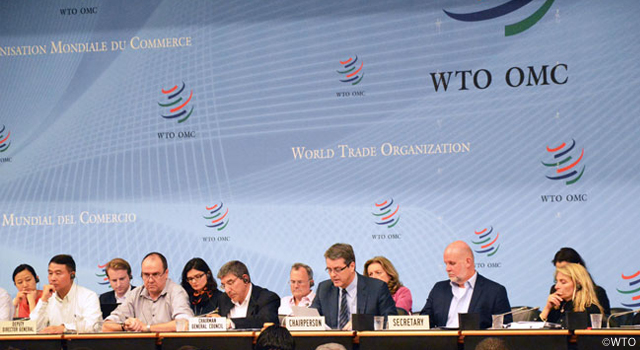 WTO Trade Negotiations Committee